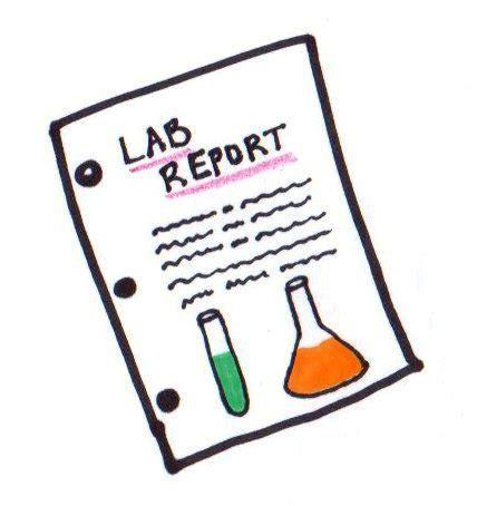 Physics lab report format